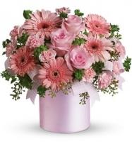 kutuda Pembe çiçek