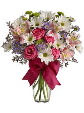 Vazoda Kır Çiçekleri Krizantem
