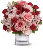 İthal Pembe, Kırmızı Gül Çiçek