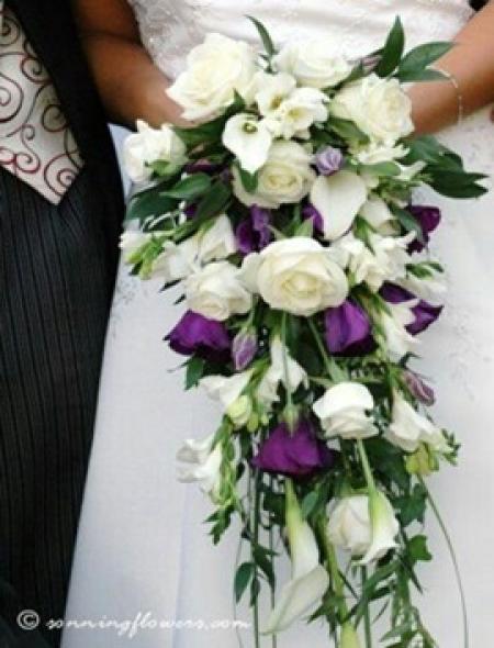 Gelin Çiçeği Mor Beyaz