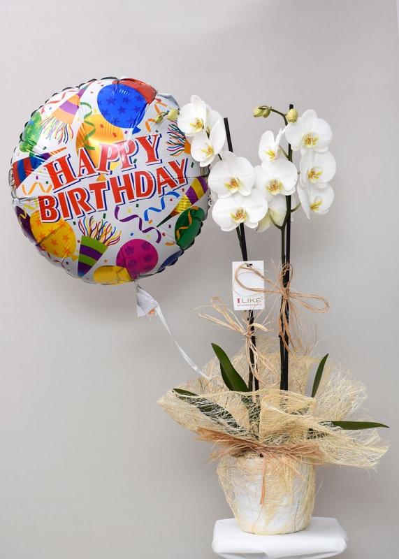 Doğum Günü Orkide Uçan Balon