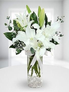 Vazoda Beyaz Lilyum