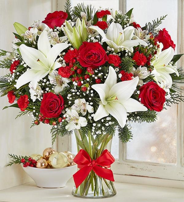 Vazoda Yılbaşı Çiçeği