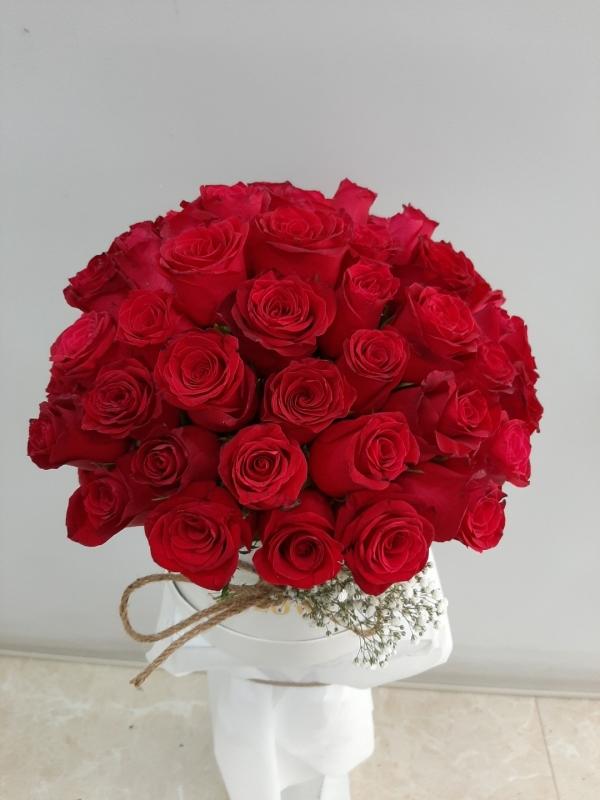 İzmir Kırmızı Güller