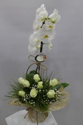 Beyaz Gül Orkide İzmir Çiçek