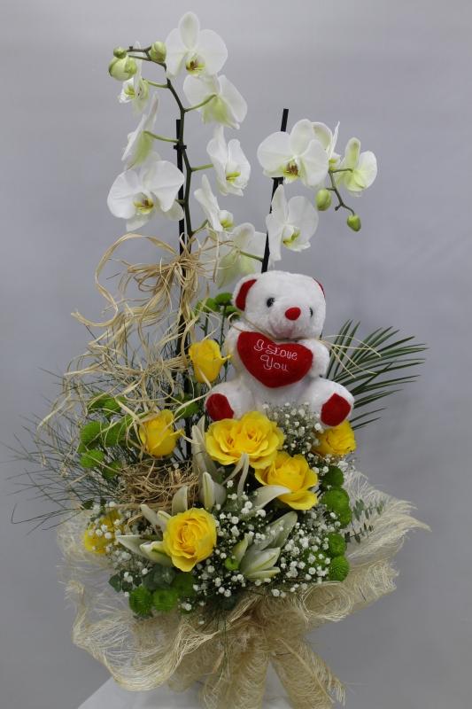 Gül Lilyum Orkide Ayıcık