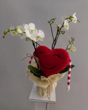 Orkide Kalp