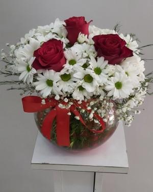 İzmir Çiçek Fanusda Papatya 3 Gül