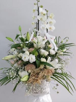 Beyaz Çiçek Aranjmanı Özel