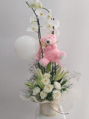 Orkide Yeni Doğan Bebek Çiçeği