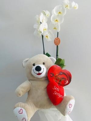 Beyaz Orkide Ayıcık Kalpli Çikolata