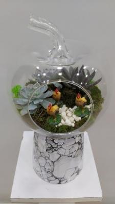 Teraryum İzmir Çiçek