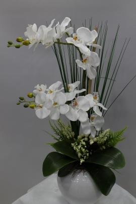 Yapay Orkide